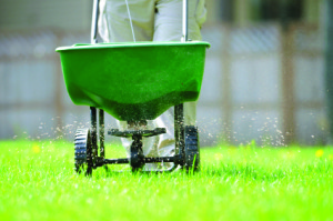 lawn_treatment